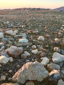 rocks-on-edge-of-desert