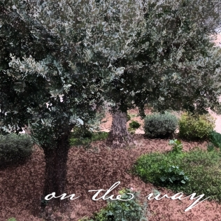 On the Way - Gethsemane